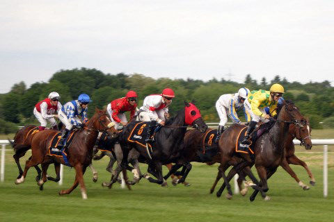 Horse race betting rules in india pga betting odds quicken open